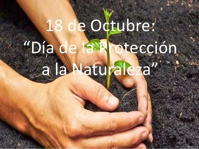 da-mundial-de-la-proteccin-de-la-naturaleza-1-638